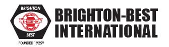 BrightonBestInternational.png